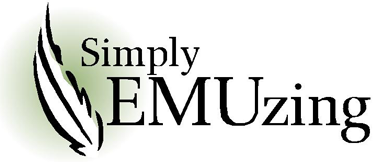 Simply Emuzing